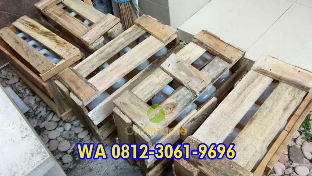 WA 081230619696, Supplier Minyak Kemiri Curah Murah, Harga Minyak Kemiri Literan Dijual Lagi