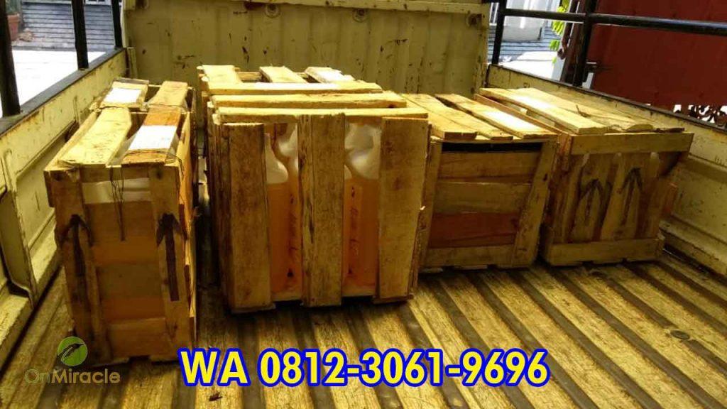 WA 081230619696, Agen Minyak Kemiri Curah Super, Harga Minyak Kemiri Per Liter